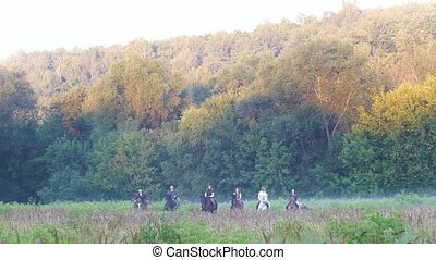 Six friends ride horses in the background of nature, misty...