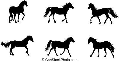 Six horses silhouettes