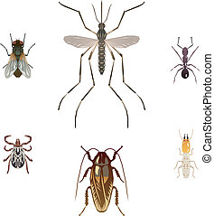 Six illustrations of pest insects - housefly, mosquito, ant...