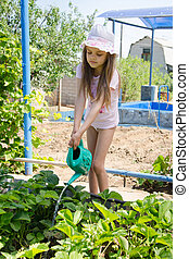 Six year old girl with a watering can strawberries