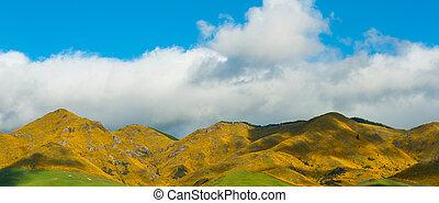 själland, mountains, färsk
