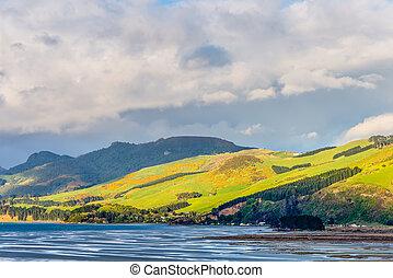 Själland,  Otago,  region,  coastal, färsk, landskap