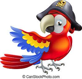sjörövare, papegoja