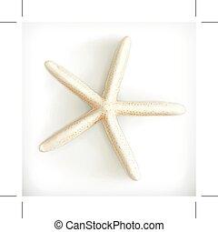 sjöstjärna, ikon