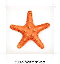 sjöstjärna, vektor, ikon