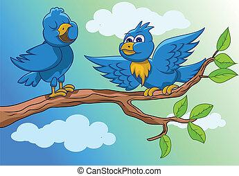 sjungande, fåglar, morgon