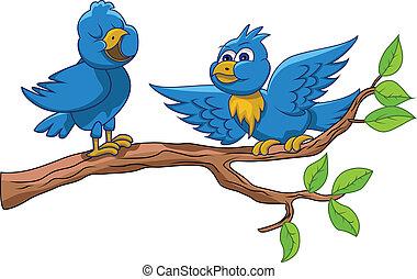 sjungande, fåglar
