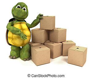 sköldpadda, med, rutor, för, skeppning