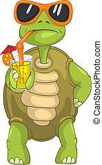 sköldpadda, rolig, drickande, cocktail.