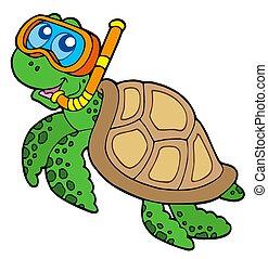 sköldpadda, snorkel, dykare, hav