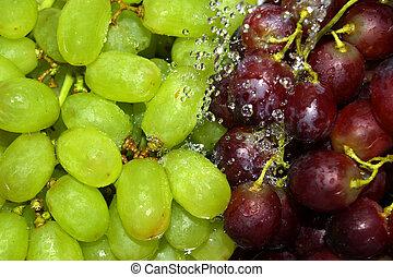 sköljning, grön, och, röda druvor