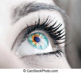 skönhet, stor, ögon