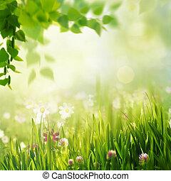 skønhed, forår, og, sommer, landskab, hos, frisk, bellis, blomster