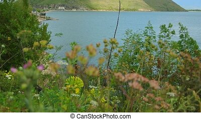 Skadar Lake in Montenegro. The largest freshwater lake in...