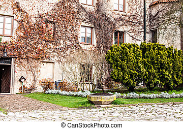 skala, 美しさ, 宮殿, pieskowa, 古い, 壁, -, 緑, cracow., ポーランド