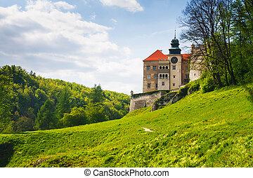 skala, pieskowa, park, ojcow, krajowy, polska, zamek