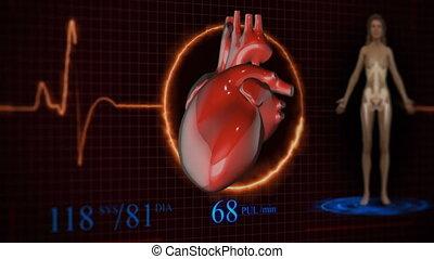skandować, analiza, anatomia, healthcare., przyszłość, futurystyczny, ludzki, medycyna, concept:, touch.