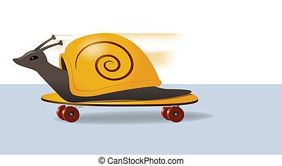 Skateboarding Snail - Illustration of a snail zooming along...