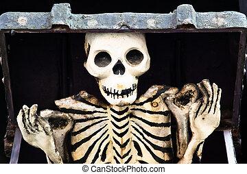 skelet, buiten de doos