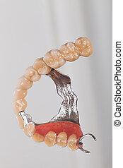 skeletachtig, prothese, -, kunst, van, dentsitry