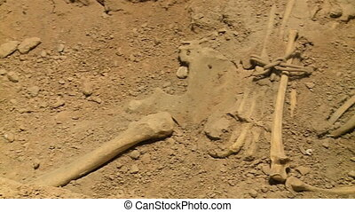 Skeletal remains in the dirt - A panning high angle shot of...