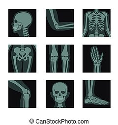 X-rays shots of human body, pictures of head and hands, legs and body parts vector. Roentgen of elbow and ribs, hips and knees, palm and knee, foot. Bones or anatomic skeletal system medical photos