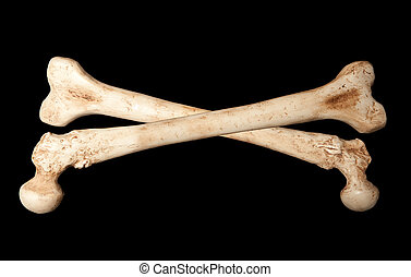 Skeleton bones - Crossbones made of two human bones on a...