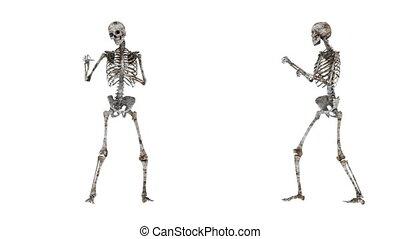 skeleton boxer