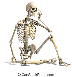 skeleton., correct, af)knippen, op, anatomisch, vertolking, steegjes, wit mannelijk, schaduw, 3d
