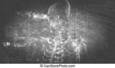 Skeleton Grunge Horror Loop