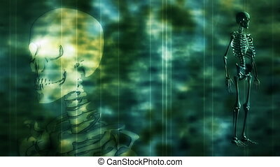 Skeleton Grunge Looping Background