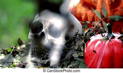 Skeleton Head with Halloween Pumpkins. Halloween Background...