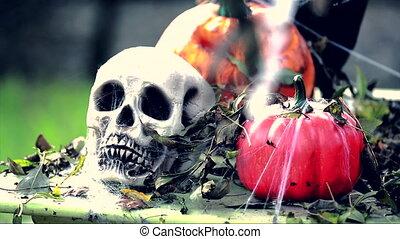 Skeleton Head with Halloween Pumpkins