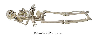 Skeleton Holding Rolled up Document