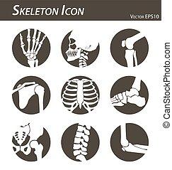 Skeleton icon ( hand finger wrist head neck thigh knee leg...