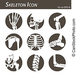 Skeleton icon ( hand finger wrist head neck thigh knee leg...