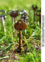 Skeleton Key - One Gold skeleton key sticks into the ground...