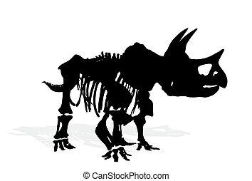 Skeleton of dinosaur.