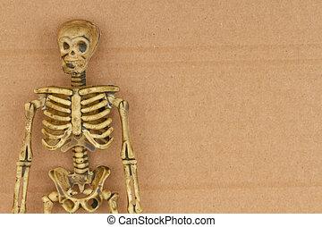 Skeleton on brown textured cardboard background