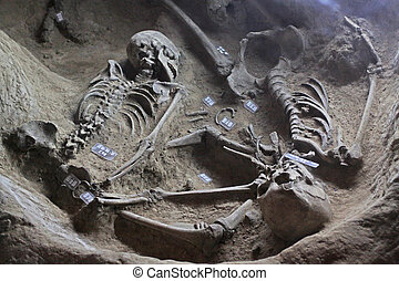skeleton - remains of martyrs in rural areas, northern China...