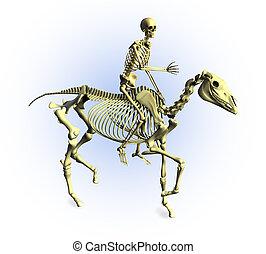 3D render of a human skeleton riding a skeleton horse.
