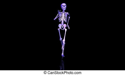 Skeleton Running front. Loop. CG. hd
