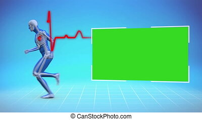 Skeleton running while chroma key appearing on blue background with ECG line