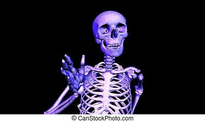 Skeleton Running upper front. Loop. CG. hd