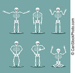Skeleton set of different poses. Expression of dead...