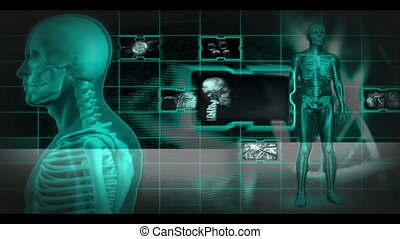 Skeleton spinning around and clips about parts of the human body appearing