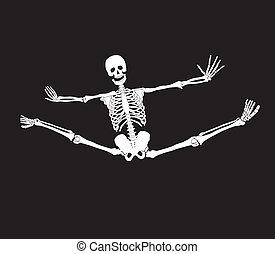 Vector skeleton making splits. Haloween background