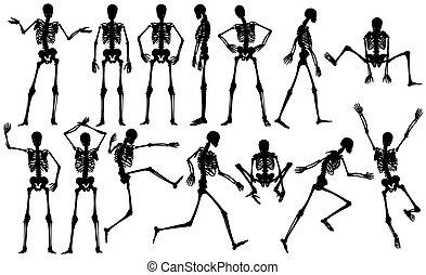 Set of male skeleton outlines