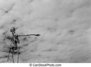 skelett, pekande