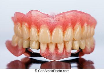skelettartig, dental, -, prothese, vorderansicht